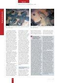 Bornitrid als feuerfester Werkstoff im Aluminiumguss - Seite 2