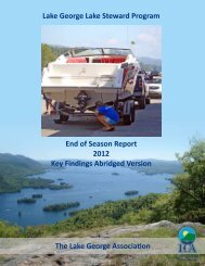 abridged 2012 report - Lake George Association