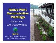 Native Plant Demonstration Plantings - Lake George Association