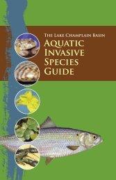 Lake Champlain Basin Aquatic Invasive Species Guide