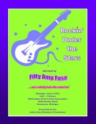 Rockin Under the Stars Brochure.pub - Lakes Area Chamber of ...