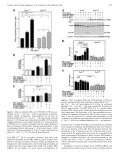 Effects of Prolactin on TSC2-Null Eker Rat Cells and in Pulmonary ... - Page 7