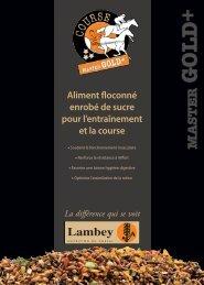 Télécharger la fiche technique en PDF - Lambey
