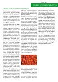 WWOOF ESTONIA NEWSLETTER - LAMMAS - Page 3