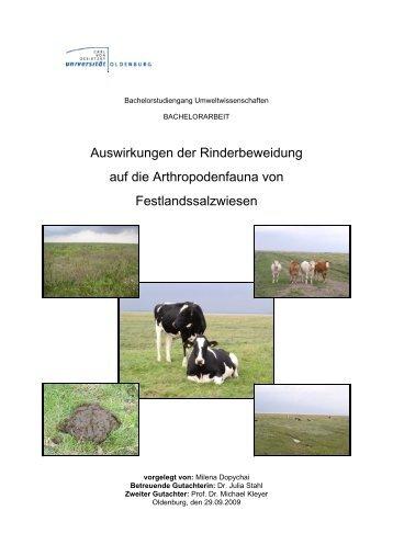 Auswirkungen der Rinderbeweidung auf die Arthropodenfauna von ...