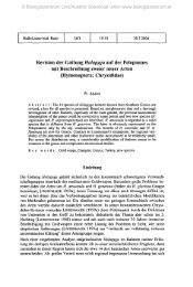 Revision der Gattung Holopyga auf der Peloponnes mit ...