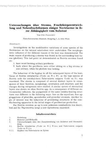 pdf desafios contemporâneos