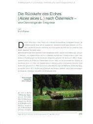 Die Rückkehr des Elches - Oberösterreichisches Landesmuseum