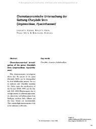 Chemotaxonomische Untersuchung der Gattung Charybdis SPETA ...