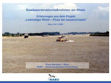 pdf 13 MB