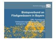 Biotopverbund an Fließgewässern in Bayern