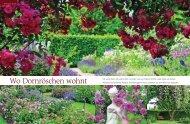 Liebes Land - Juli 2012 - Rosen kaufen, Gartenkurse, Rosengarten ...