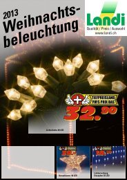 LED-Lichterketten - Landi