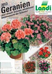Geranien 2013 (pdf / 3174 KB) - LANDI Jungfrau AG