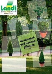 Baumschul- und Hecken- pflanzen - LANDI Jungfrau AG