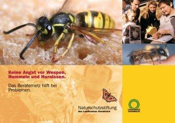 Keine Angst vor Wespen, Hummeln und Hornissen. Das Beraternetz ...
