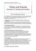 Ideenpool für belebende Maßnahmen im Weinberg - Seite 2