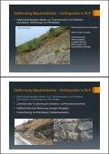 (Microsoft PowerPoint - DLR Mosel Reptilienschutz im Weinberg ... - Seite 4