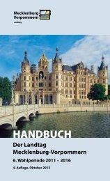 Dieses Dokument jetzt herunterladen - Landtag Mecklenburg ...