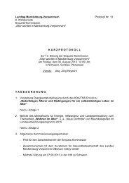 Kurzprotokoll der 13. Sitzung (pdf) - Landtag Mecklenburg ...