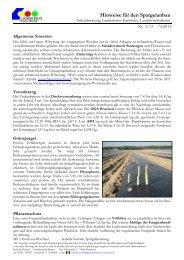 Spargelhinweis 05-13 vom 07.06.2013.pdf