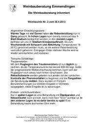Weinbauinfo 03.pdf