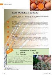Ernährungsinformation Eier / Rezept Semmelmehlklößchen
