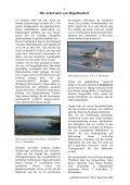 Heft 3-4 Dezember 2009 - LANIUS - Page 5