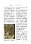 Heft 3-4 Dezember 2009 - LANIUS - Page 7