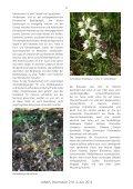 Heft 1-2 Juni 2012 - LANIUS - Page 6