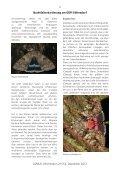 Heft 3-4 Dezember 2012 - LANIUS - Page 6