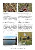 Heft 3-4 Dezember 2012 - LANIUS - Page 7