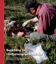 Besiktning av rovdjursangripna tamdjur - Länsstyrelserna