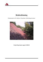Riskperspektivet för rödfyren i Degerhamn ... - Länsstyrelserna