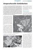 • Sonderheft Schmetterlinge • Interview: Frauenpower im ... - LBV - Page 4
