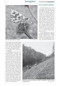 • Sonderheft Schmetterlinge • Interview: Frauenpower im ... - LBV - Page 6