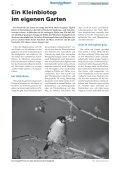 • Naturnaher Garten • Interview: Baumschutz • Alle ... - LBV München - Page 4