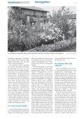 • Naturnaher Garten • Interview: Baumschutz • Alle ... - LBV München - Page 5