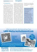 • Naturnaher Garten • Interview: Baumschutz • Alle ... - LBV München - Page 7