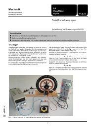 P1.5.3.3 Freie Drehschwingungen - LD DIDACTIC