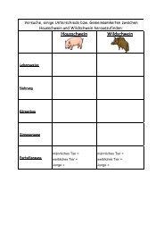 Hausschwein Wildschwein - Lehrerweb