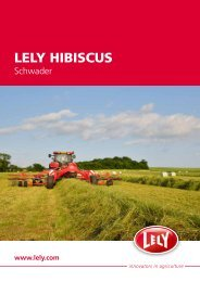 LELY HIBISCUS
