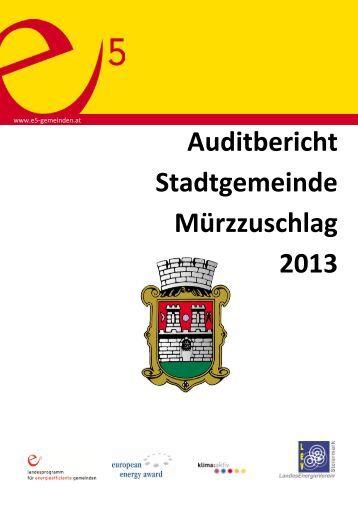 Auditbericht 2013 - LandesEnergieVerein Steiermark