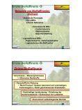 B_o Referat Bioraffinerie-Kromus.pdf - Page 3