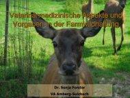 Unterlagen Fr. Dr. Forster - Bayerische Landesanstalt für ...