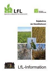 Die Publikation als PDF 1,3 MB - Bayerische Landesanstalt für ...
