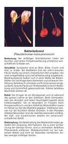 Süß- und Sauerkirschen - Bayerische Landesanstalt für Landwirtschaft - Page 2