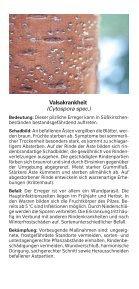 Süß- und Sauerkirschen - Bayerische Landesanstalt für Landwirtschaft - Page 6