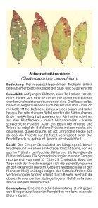 Süß- und Sauerkirschen - Bayerische Landesanstalt für Landwirtschaft - Page 7