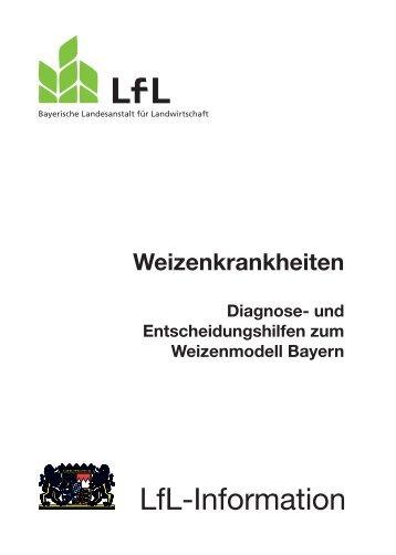 Die Publikation als PDF 2,5 MB - Bayerische Landesanstalt für ...